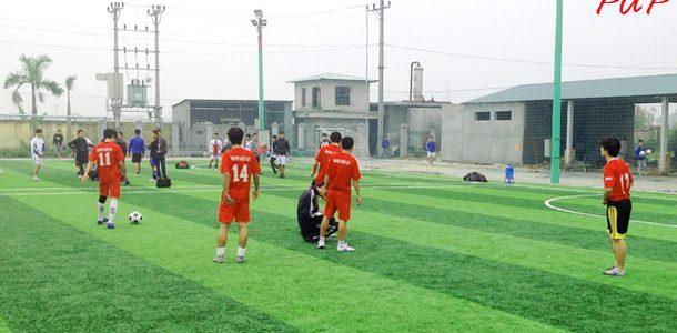 Thể thao bóng đá cỏ nhân tạo phải chăng đã đi xuống ?