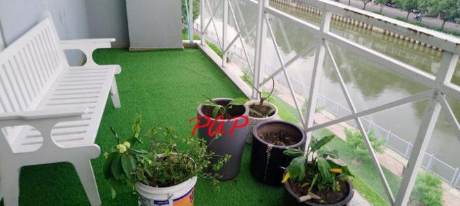 Tiết lộ bí quyết cách vệ sinh và sử dụng cỏ nhân tạo đúng cách phần 2