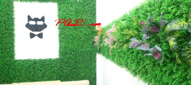 Cách trang trí mới kết hợp cỏ nhân tạo và cỏ nhựa