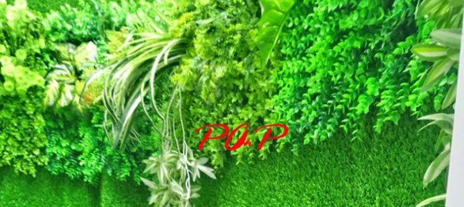 Cỏ lá nhựa treo tường hay cỏ lá nhựa dán tường có đặc điểm gì