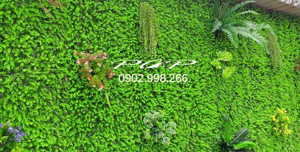 Ốp vách tôn, ban công nhỏ vẫn là điều có thể với cỏ nhân tạo