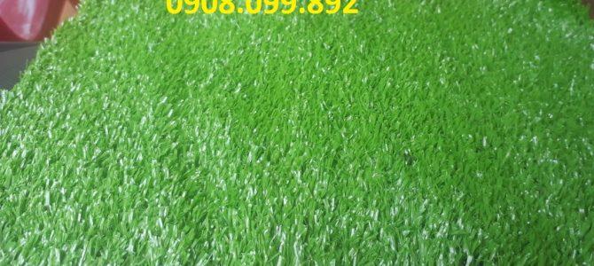 Thảm cỏ nhựa trang trí trải sàn