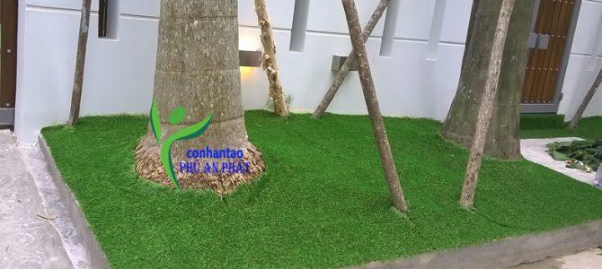 Cách sử dụng thảm cỏ nhân tạo trong thời tiết ẩm ướt
