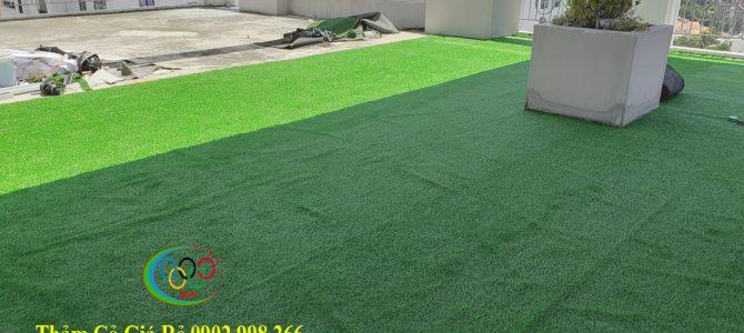 Thảm cỏ nhân tạo Bình Hưng Hoà B quận Bình Tân